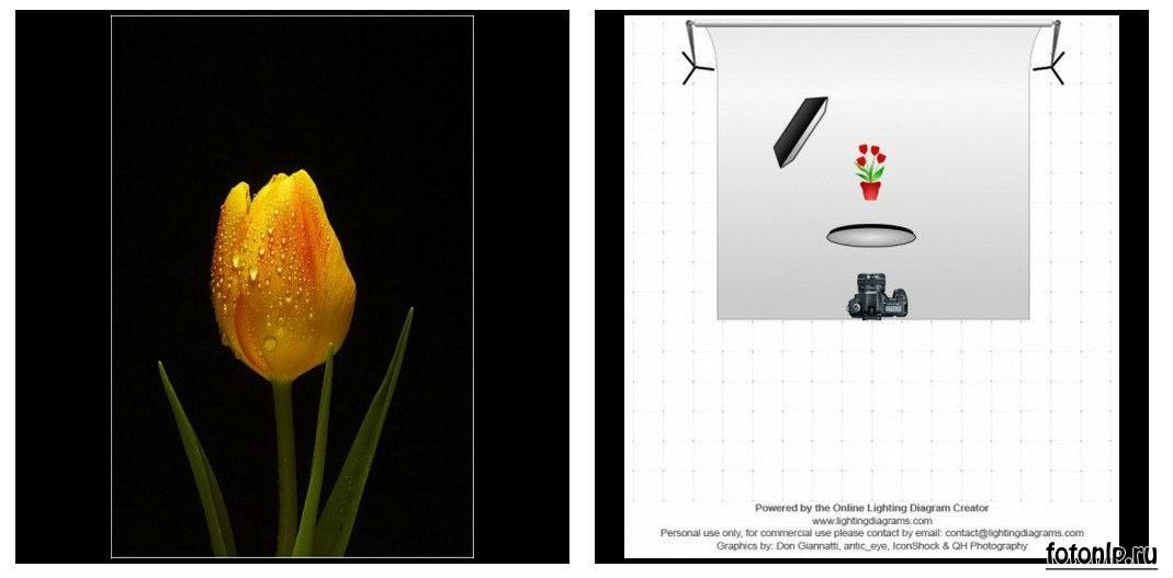 Схемы света для фотосессии в фотостудии - Фото №905