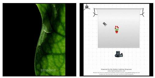 Схемы света для фотосессии в фотостудии - Фото №856