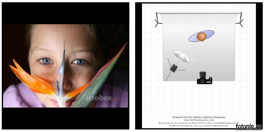 Схемы света для фотосессии в фотостудии - Фото №1074